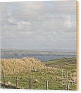 Doolin Bay Wood Print