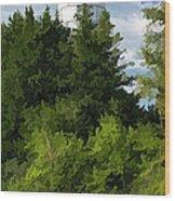 Door County Cana Island Vertical Panorama Wood Print