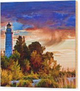 Door County Cana Island Wisp Wood Print