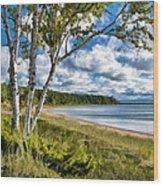 Door County Europe Bay Birch Wood Print
