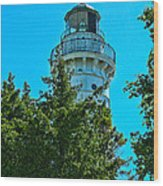Door County Wi Lighthouse Wood Print
