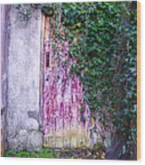 Door Covered In Ivy Wood Print