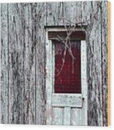 Door To The Past Wood Print