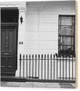Door Window And Fence Wood Print