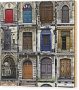 Doors Of Paris Wood Print