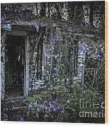 Doorway And Flowers Two Wood Print