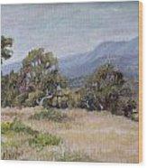Dos Pueblos Canyon Wood Print