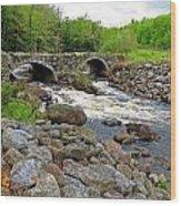 Double Arch Bridge Wood Print