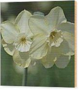 Double Cream Delights Wood Print