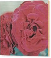 Double Desert  Red Roses Wood Print