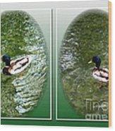 Double Duck Wood Print