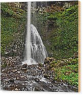 Double Falls In Silver Falls State Park In Oregon Wood Print