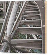Double Helix Bridge 03 Wood Print