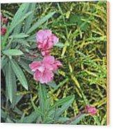 Double Oleander Wood Print