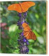 Double Orange Wood Print