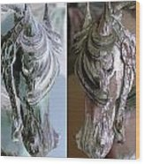 Double Portrait Of Old Carousel Horse Wood Print