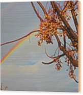 Double Rainbow Wood Print