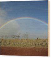 Double Rainbow Over A Field In Maui Wood Print