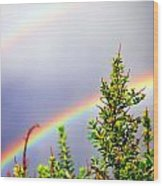 Double Rainbow Sky Wood Print