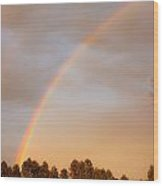 Double Rainbows Wood Print