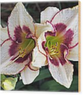 Double The Bloom Wood Print