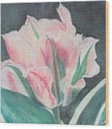 Double Tulip Wood Print by Cathy Lindsey
