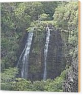 Double Waterfall Wood Print