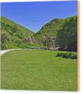 Dovedale - Stepping Stones Area Wood Print