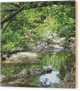 Down By The Creek Wood Print