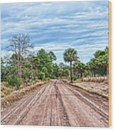 Down Chisolm Island Road Wood Print