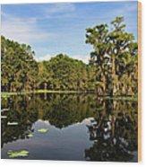 Down In The Bayou Wood Print