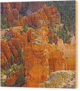 Down Into Bryce Wood Print by Jeff Swan