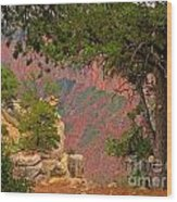 Down Into The Grand Canyon Wood Print