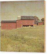 Down On The Farm Wood Print by Kim Hojnacki