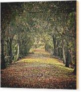 Down The Lane Wood Print by Gail Falcon