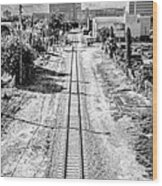 Down The Tracks - Downtown Miami - Black And White Wood Print by Ian Monk