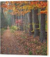 Down The Trail Wood Print