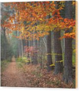 Down The Trail Square Wood Print by Bill Wakeley