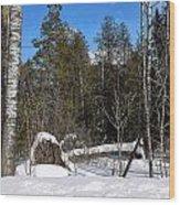 Downed Poplar Wood Print