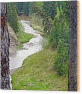 Downriver Wood Print