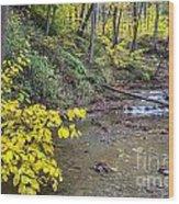 Downstream Blue Hen Falls Wood Print