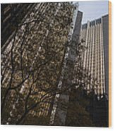 Downtown Autumn Wood Print