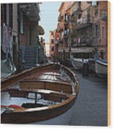 Downtown Manarola Wood Print