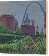 Downtown St. Louis Garden Wood Print
