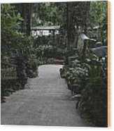 Downward Sloping Part Inside The National Orchid Garden In Singapore Wood Print