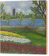 Dow's Lake - Ottawa Wood Print