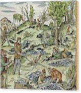 Dowsing Wood Print
