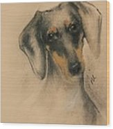 Doxie Wood Print