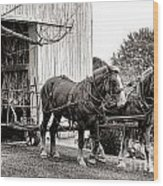 Draft Horses At Work Wood Print by Olivier Le Queinec