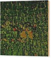 Dragon Eye Abstract Wood Print